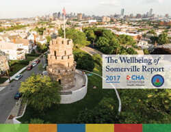 The Wellbeing of Somerville Report
